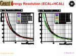 energy resolution ecal hcal