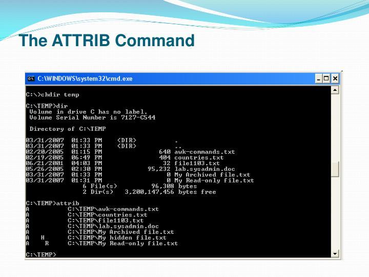 The ATTRIB Command