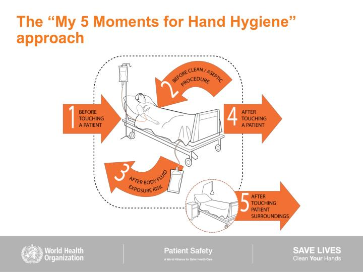 "The ""My 5 Moments for Hand Hygiene"" approach"