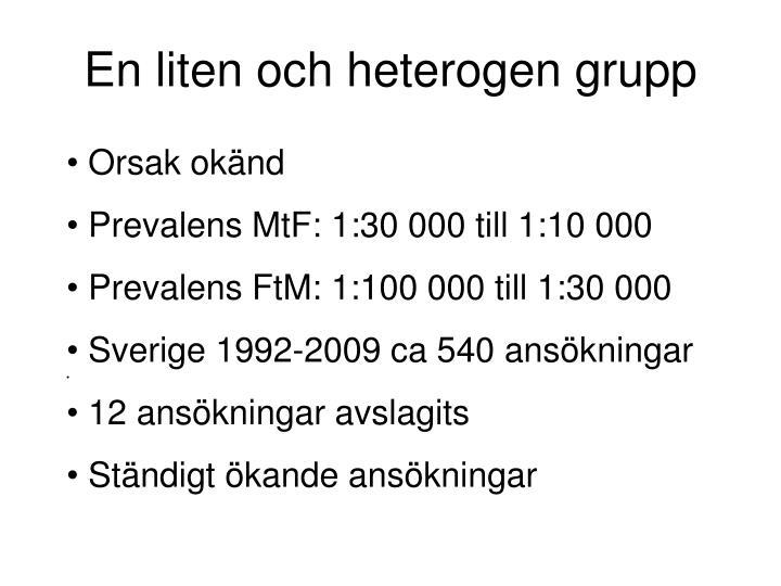 En liten och heterogen grupp