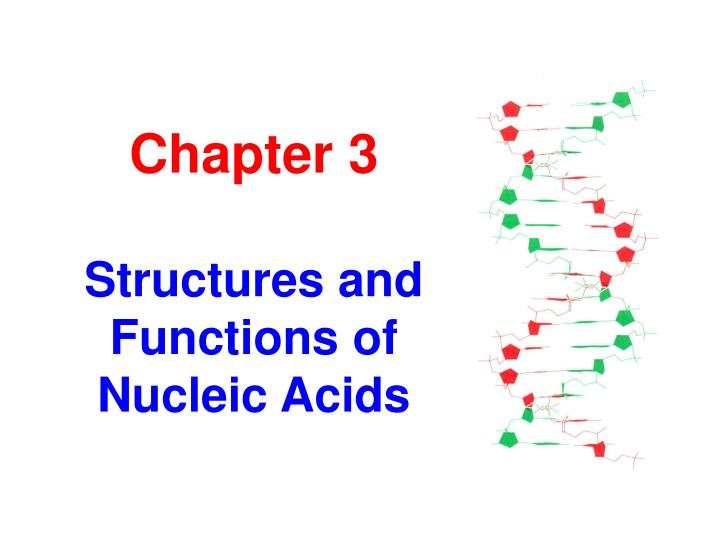 Chapter 3 structures and functions of nucleic acids