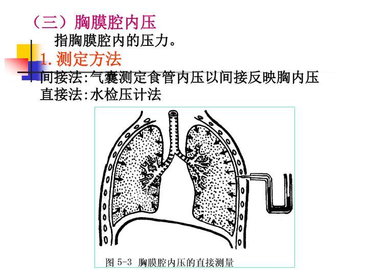 (三)胸膜腔内压