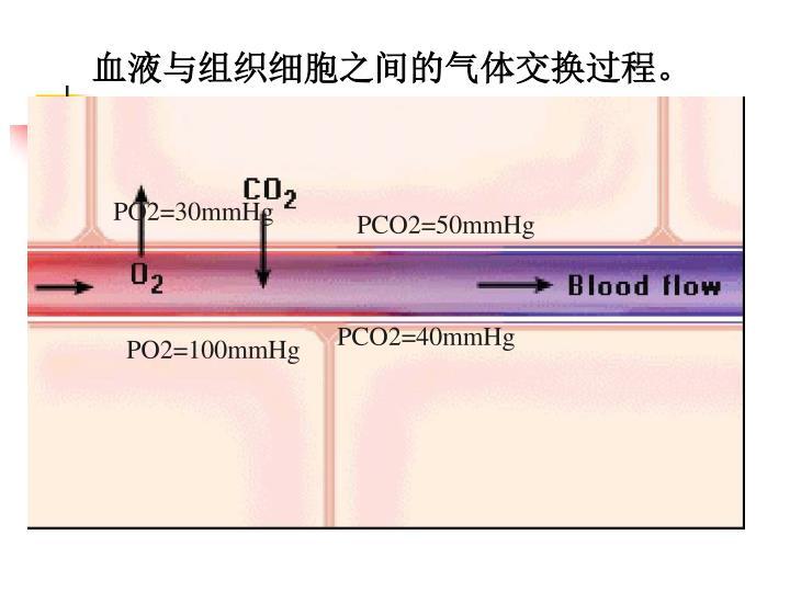血液与组织细胞之间的气体交换过程。