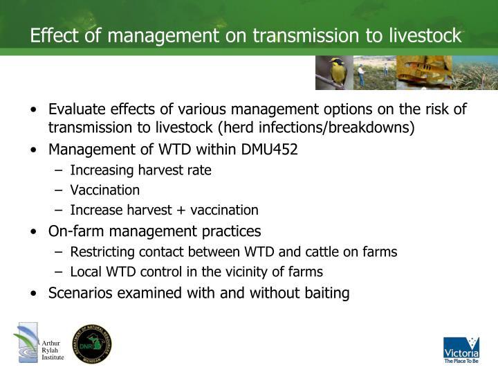 Effect of management on transmission to livestock