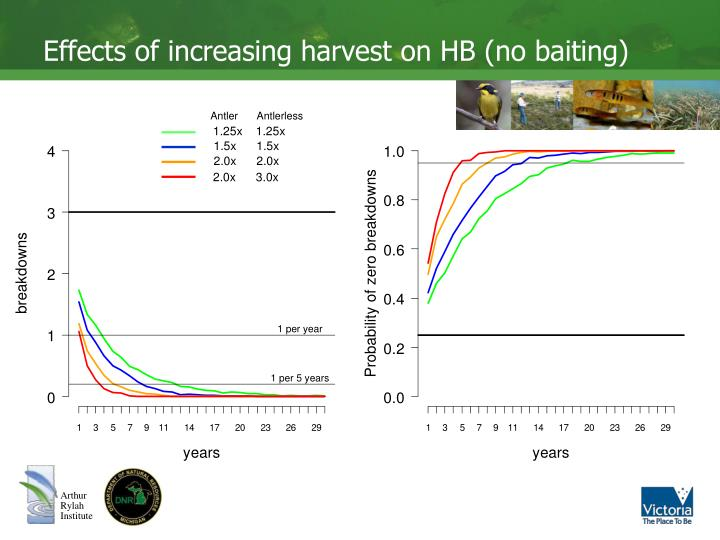 Effects of increasing harvest on HB (no baiting)