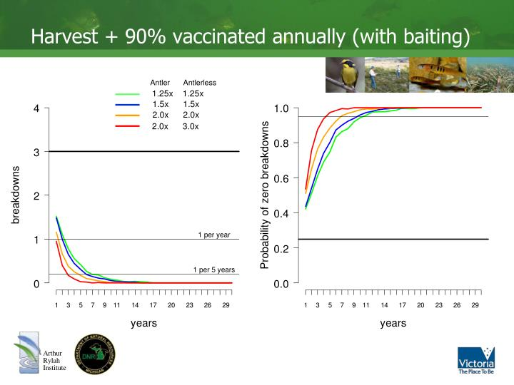 Harvest + 90% vaccinated annually (with baiting)