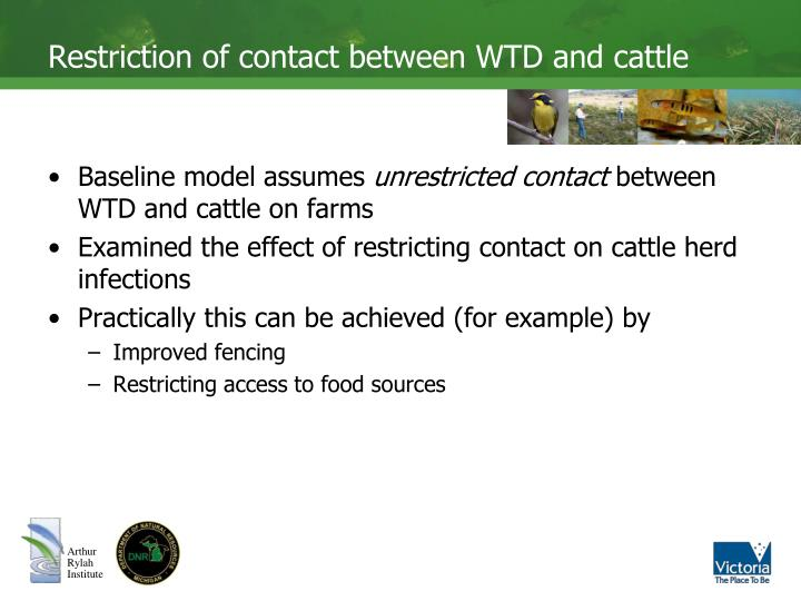 Restriction of contact between WTD and cattle