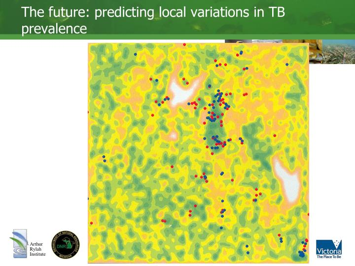 The future: predicting local variations in TB prevalence