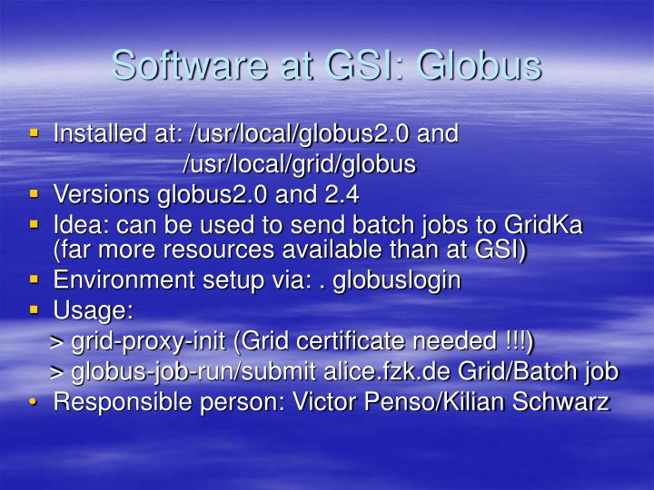 Software at GSI: Globus