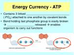energy currency atp