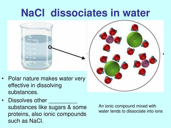 NaCl  dissociates in water