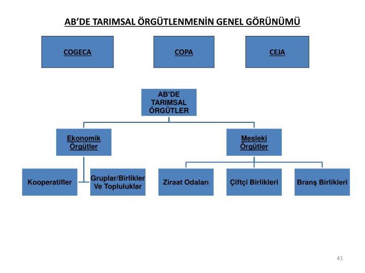 ABDE TARIMSAL RGTLENMENN GENEL GRNM