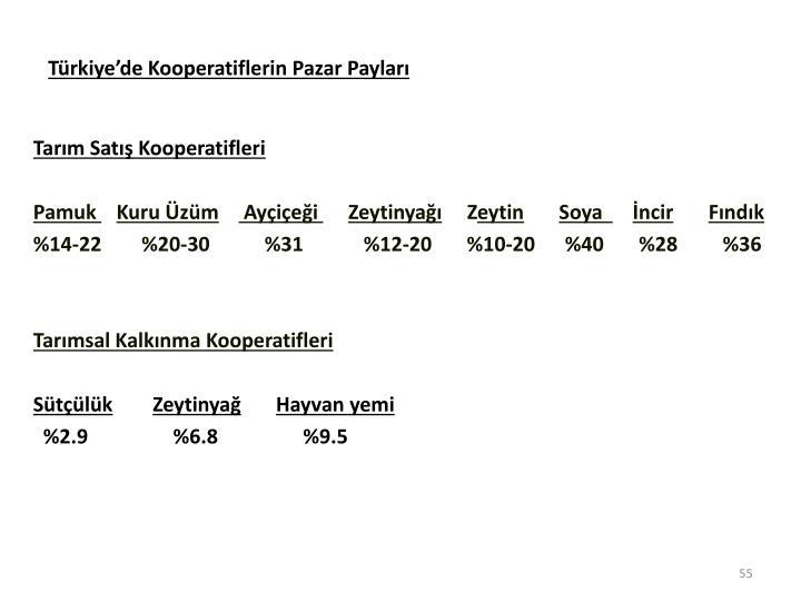 Trkiyede Kooperatiflerin Pazar Paylar