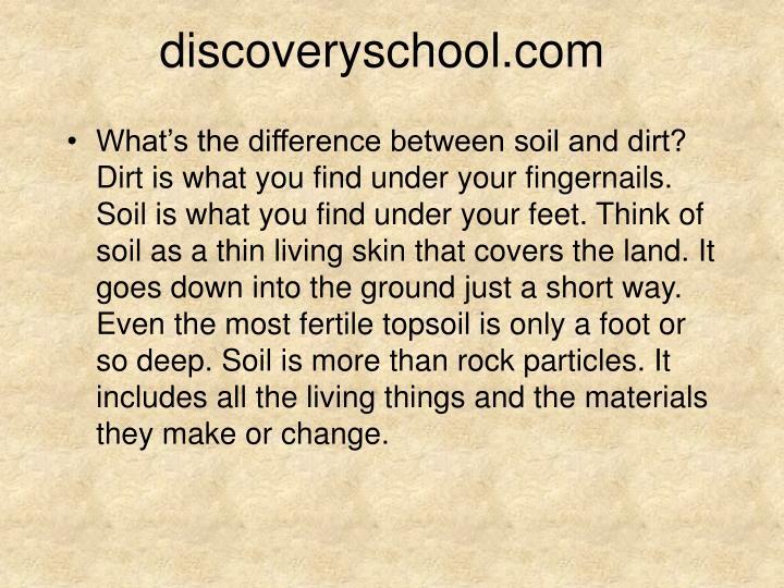 discoveryschool.com