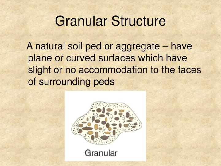 Granular Structure