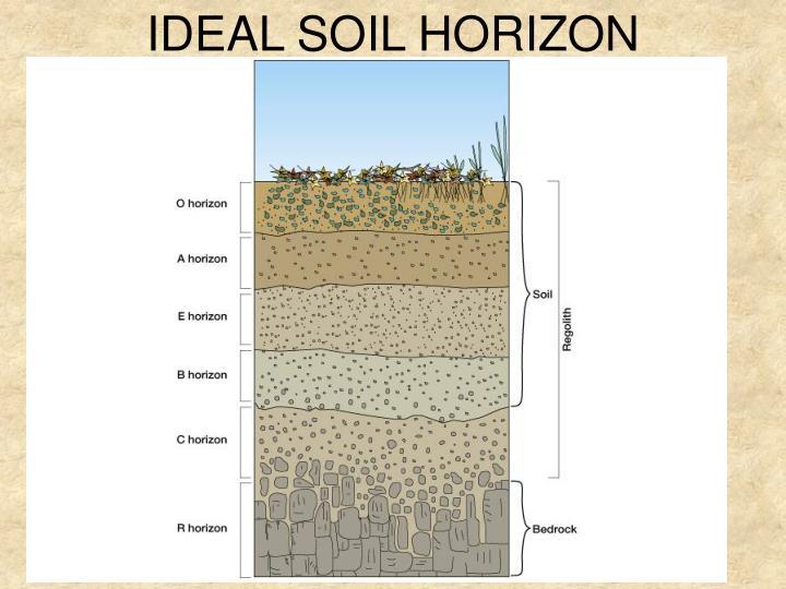 IDEAL SOIL HORIZON