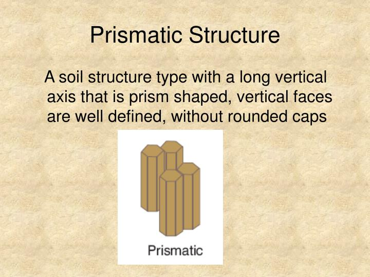 Prismatic Structure