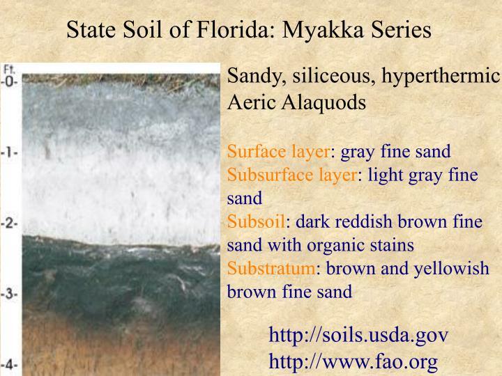 State Soil of Florida: Myakka Series
