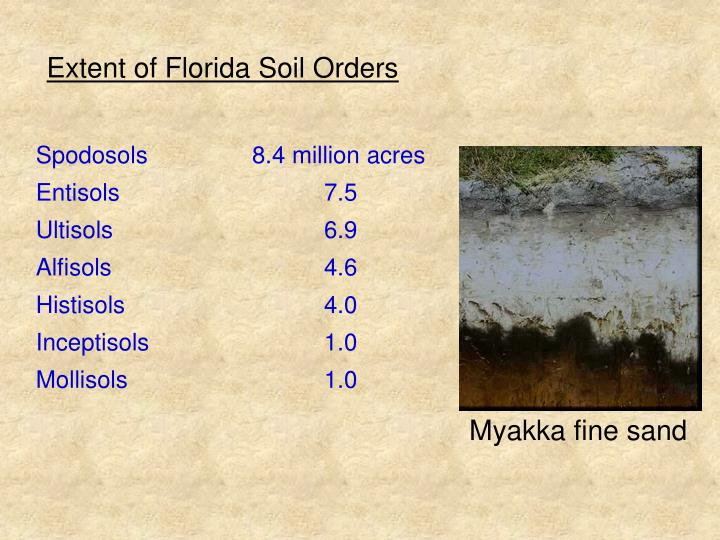 Extent of Florida Soil Orders