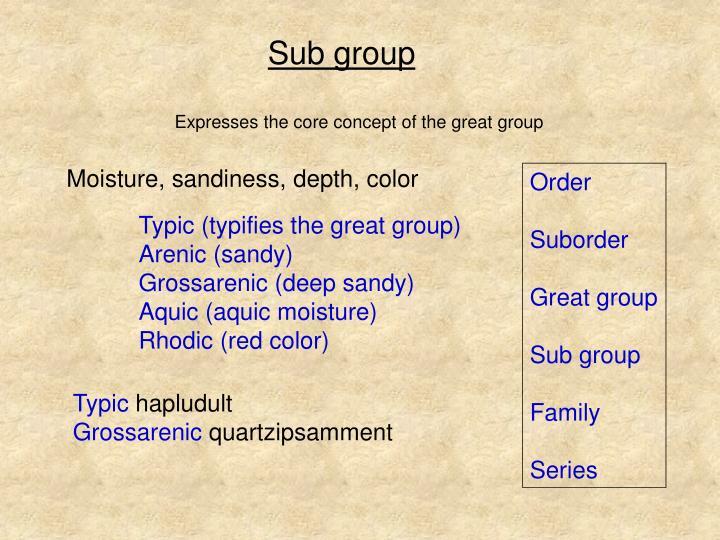 Sub group