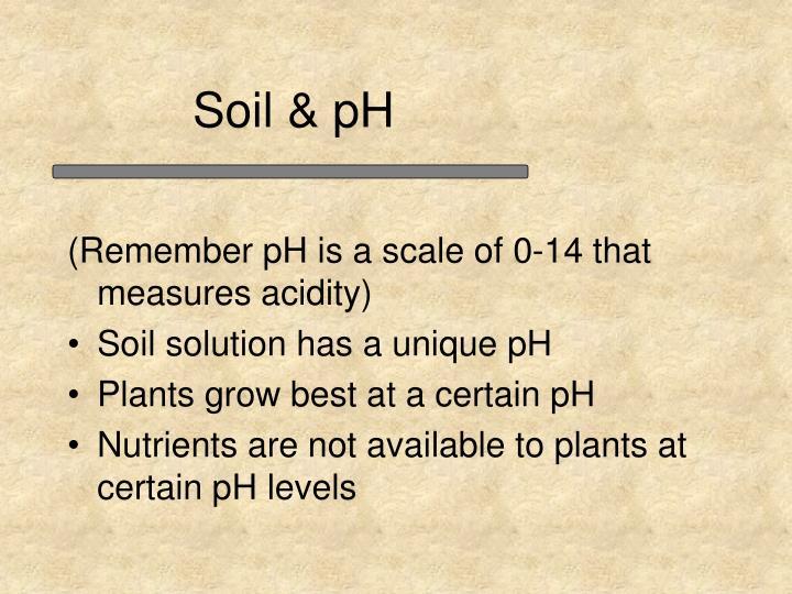 Soil & pH