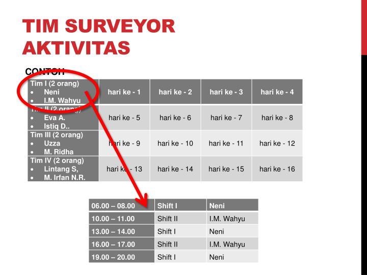 TIM SURVEYOR AKTIVITAS
