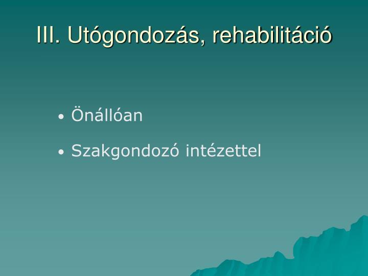 III. Utógondozás, rehabilitáció