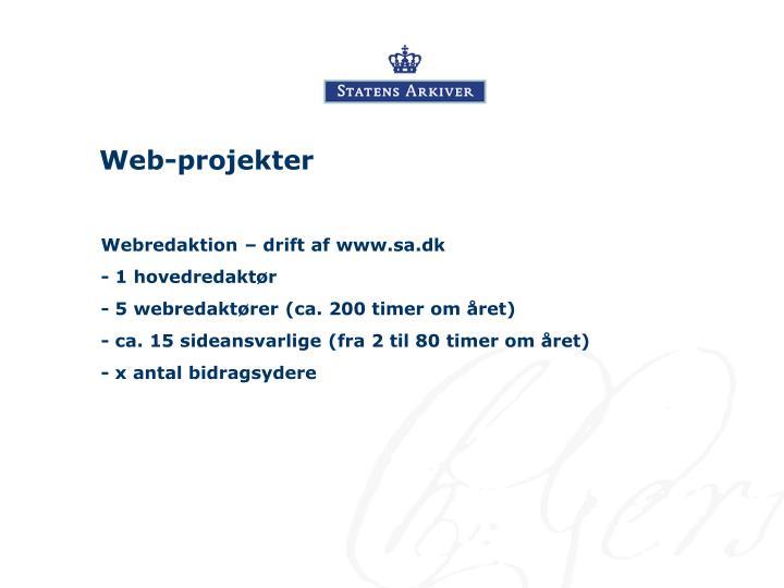 Web-projekter