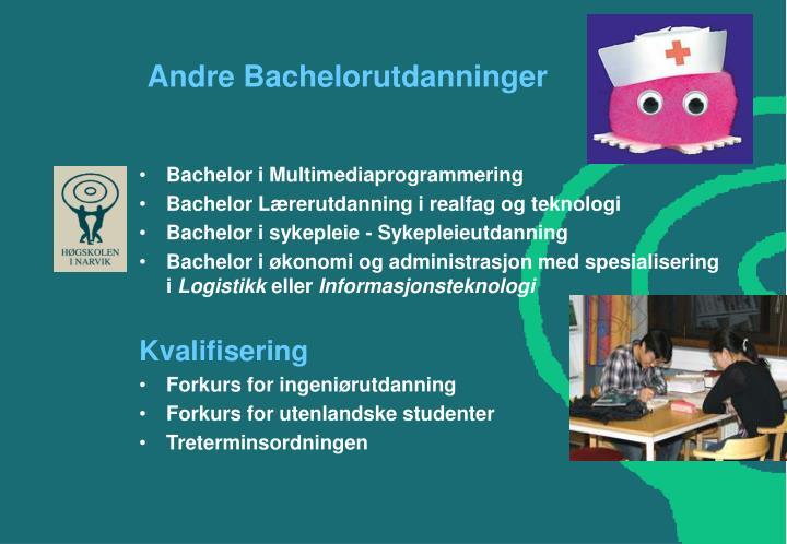 Andre Bachelorutdanninger