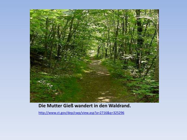 Die Mutter Gieß wandert in den Waldrand.