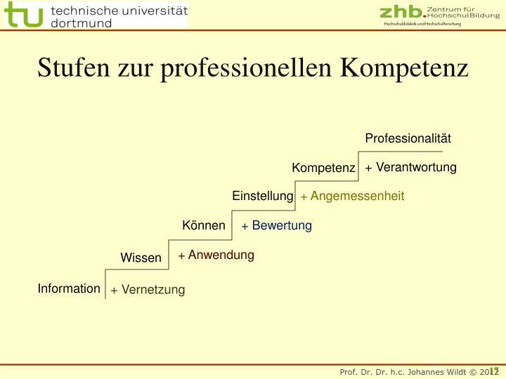 Stufen zur professionellen