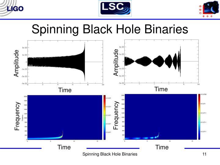 Spinning Black Hole Binaries