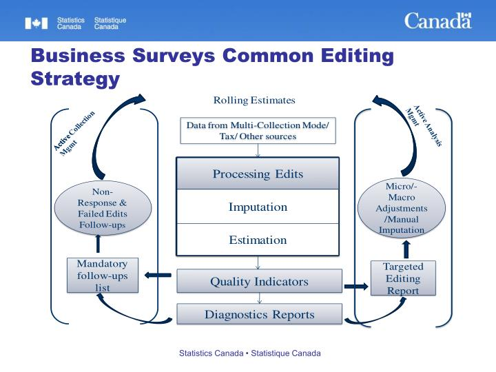 Business Surveys Common Editing Strategy