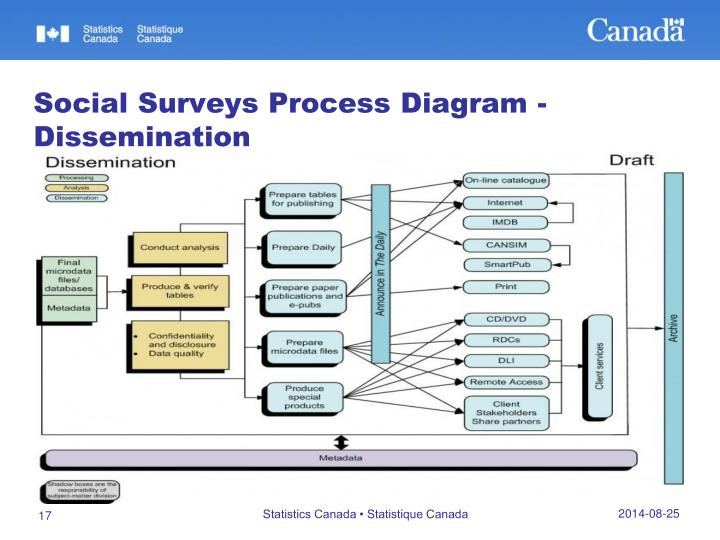 Social Surveys Process Diagram - Dissemination