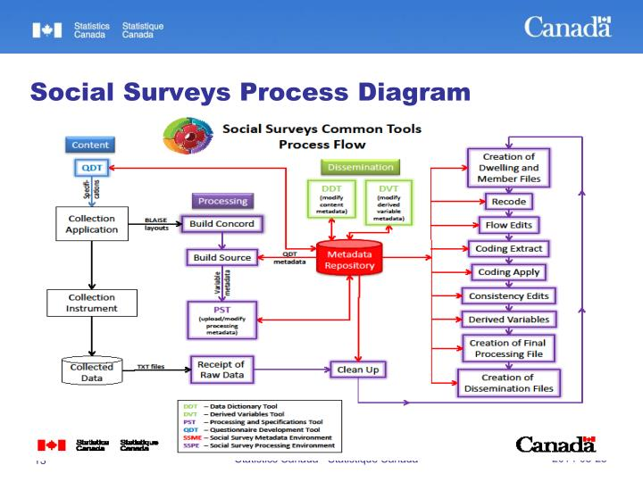 Social Surveys Process Diagram