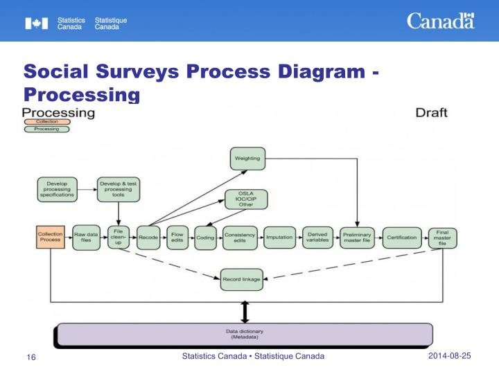 Social Surveys Process Diagram - Processing