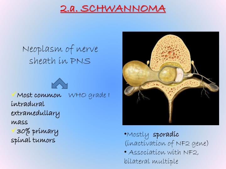 2.a. SCHWANNOMA