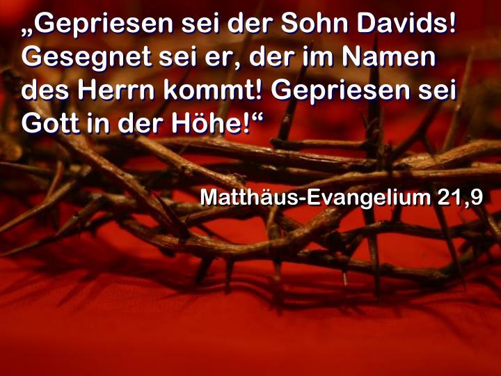 """""""Gepriesen sei der Sohn Davids! Gesegnet sei er, der im Namen des Herrn kommt! Gepriesen sei Gott in der Höhe!"""""""