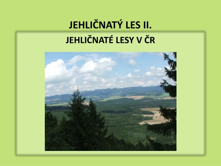 JEHLIČNATÝ LES II.
