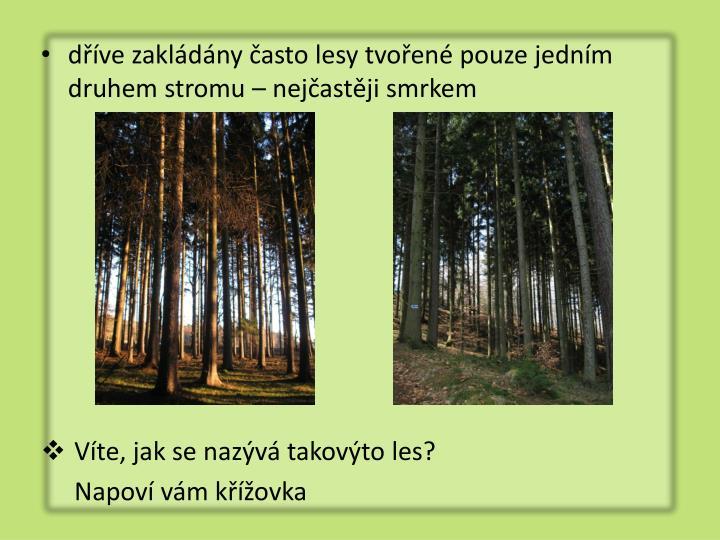 dříve zakládány často lesy tvořené pouze jedním druhem stromu – nejčastěji smrkem