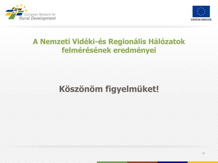 A Nemzeti Vidéki-és Regionális Hálózatok felmérésének eredményei