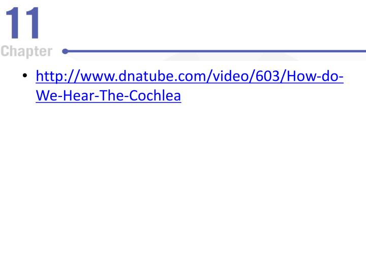 http://www.dnatube.com/video/603/How-do-We-Hear-The-Cochlea