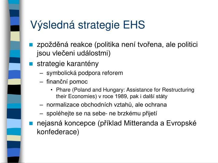 Výsledná strategie EHS