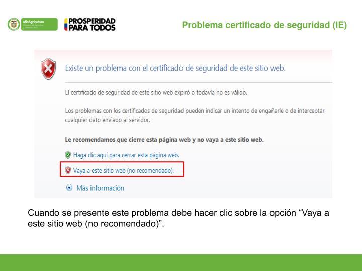 Problema certificado de seguridad (IE)