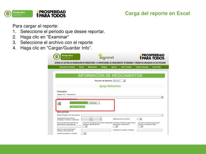 Carga del reporte en Excel