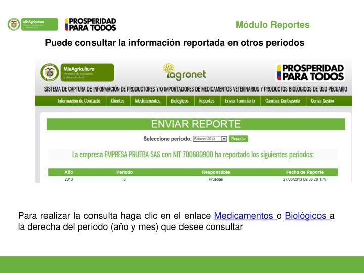 Módulo Reportes