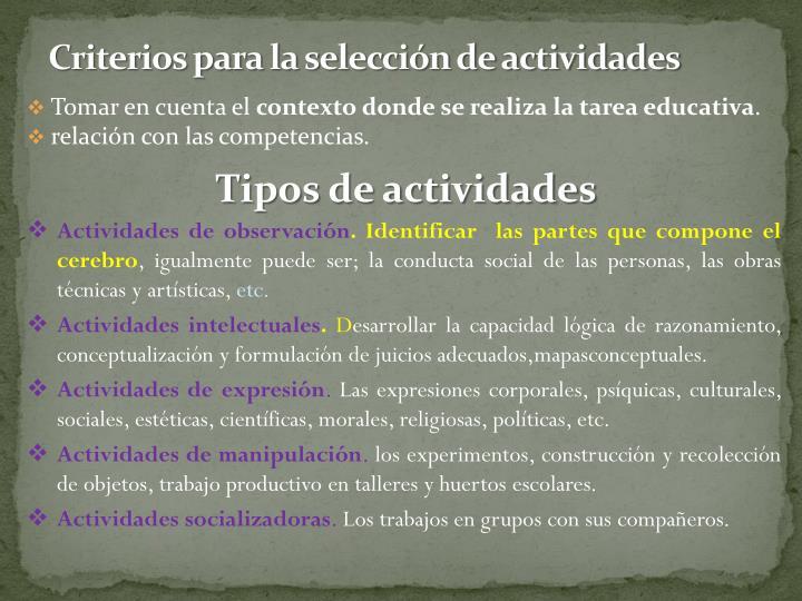 Criterios para la selección de actividades