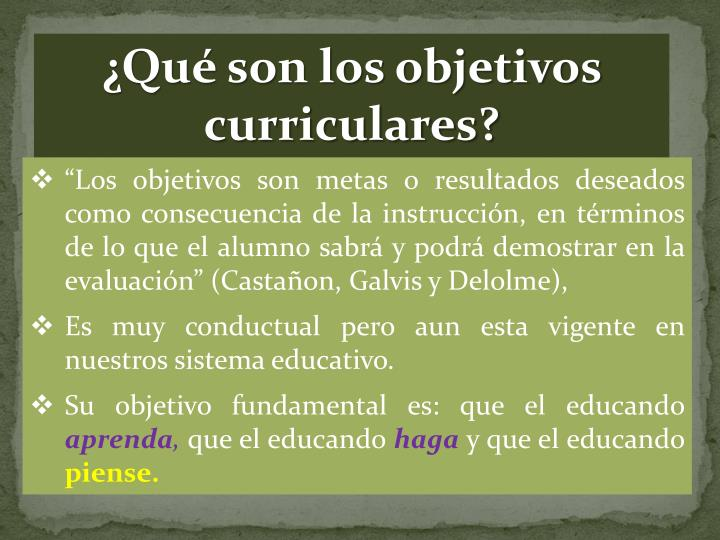 ¿Qué son los objetivos curriculares?