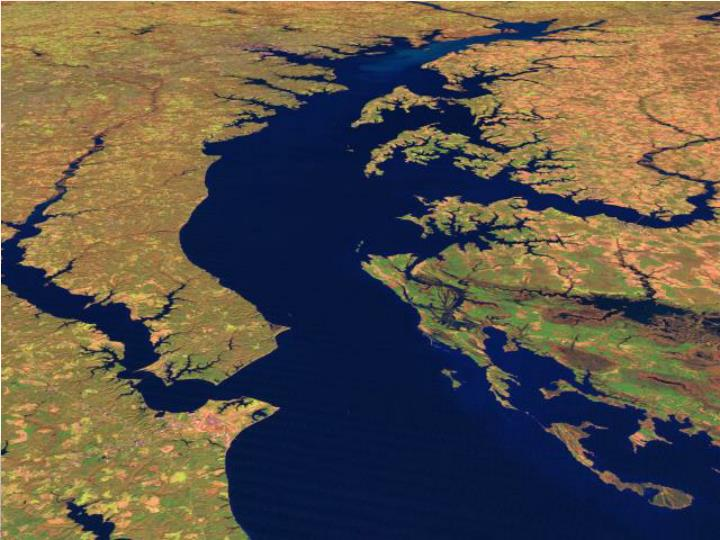 Chesapeake bay hypoxia