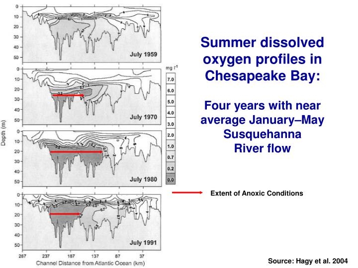 Summer dissolved oxygen profiles in Chesapeake Bay: